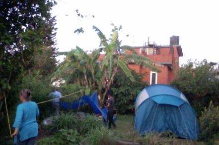 Dans le jardin de chez Nicole Decourrière